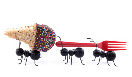 Ants Carrying Ice Cream Cone